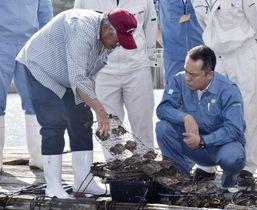 三重県志摩市の英虞湾を訪れ、アコヤガイの被害状況を視察する鈴木英敬知事(右)=23日午後