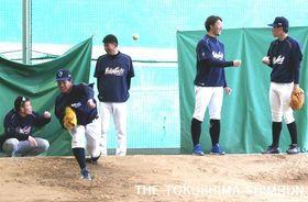 キャンプインした徳島インディゴソックスの選手たち=徳島県海陽町の蛇王球場