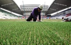 天然芝から張り替えられたハイブリッド芝=13日、ノエビアスタジアム神戸