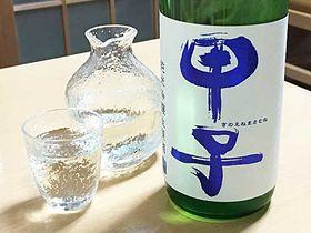 千葉県印旛郡酒々井町 飯沼本家