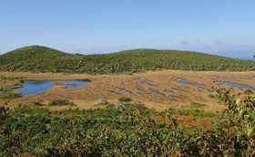 大雪山系沼ノ平で復活する登山道からは「四ノ沼」の紅葉も眺めることができる=2016年9月(環境省提供)