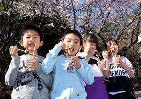 桜の木の下でおいしそうにお菓子を味わう竹駒小の子どもたち