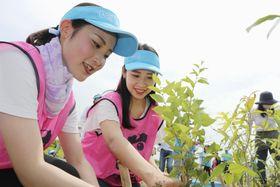 「千年希望の丘」で植樹をする参加者=23日午後、宮城県岩沼市