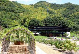 さまざまな植物が並ぶ「HAKKOガーデン」と3枚屋根が特徴の「HAKKOゲート」(奥)