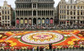 ブリュッセルの広場グランプラスで始まった「フラワーカーペット」=16日(共同)