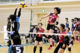 バレーボール女子準々決勝 姫路女学院-加古川西 第2セット、スパイクを放つ姫路女学院の小国(2)