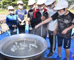 ビニール袋に入れたコメを大鍋でゆで、炊き上げる児童たち