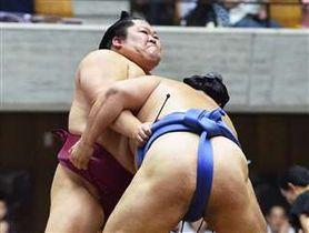 大相撲秋田場所で力強く相手のまわしを取る豪風=2018年8月21日、県立体育館