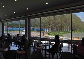 オープンした「並木カフェ メタセコイア」の店内。大きな窓からまっすぐに伸びる並木道が一望できる(高島市マキノ町寺久保・マキノピックランド)