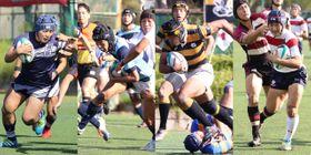 左から、桐蔭学園、関東六浦、慶応、東海大相模