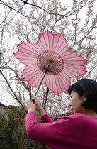 「和傘CASA」が取り扱う桜の花の形をした和傘=岐阜市湊町