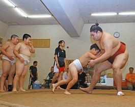 子どもたちのぶつかり稽古に応じる阿炎関(右)=豊橋市今橋町の武道館で