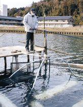 イサザ漁に励む住民=穴水町川島