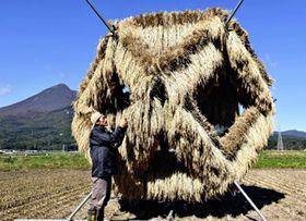幾何学図形を立体的にした「農業アート」=猪苗代町磐里字百目貫の田んぼ