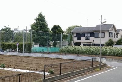 農園が点在する住宅地に立つ元農林水産事務次官の男の自宅。刺殺された長男は隣接する小学校の運動会の音に立腹したという=6月下旬、東京都練馬区