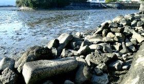 福岡市西区の今津干潟で見つかった大量の古い墓石。戒名や実名が刻まれ、自然石に交じって帯状に積まれている