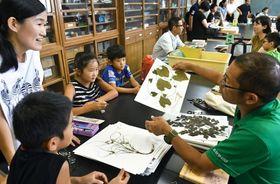 専門家に教わりながら採集物の名前を調べる子どもら=鹿児島市の県立博物館