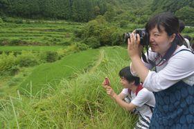 ワークショップで牟岐町の田園風景を撮影する大学生ら=同町橘