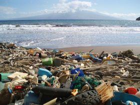 米ハワイの海岸に打ち上げられたさまざまなプラスチックごみ。関連する企業も多種多様だ(米海洋大気局提供)