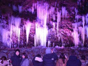 ライトアップで彩られた「三十槌の氷柱」。大勢の見物客たちが記念撮影していた=12日午後5時10分ごろ、秩父市大滝