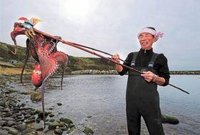 <里浜写景>伝統の「だまし」で仕留める 磯場のタコ漁