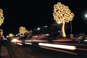 ニカラグアの首都マナグアで輝く「生命の木」(パブロ・シスネロ氏撮影・共同)