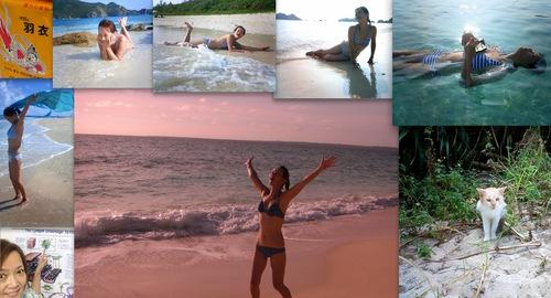 左端からリンパのお勉強、朝から夕方まで海水浴という夢のような日々、のら島ねこも登場!