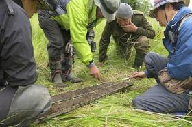 色丹島で津波堆積物とみられる地層を調べる専門家ら(訪問団提供)