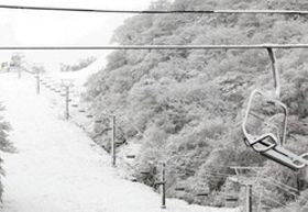 10センチほどの雪が積もった標高1000メートル地点=米原市甲津原の奥伊吹スキー場で(奥伊吹観光提供)