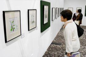 倉本聰さんの繊細な点描画作品に見入る来場者=15日午前、徳島市のイオンモール徳島