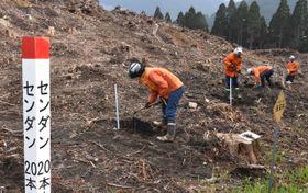 宮崎南部森林管理署によるセンダン植樹