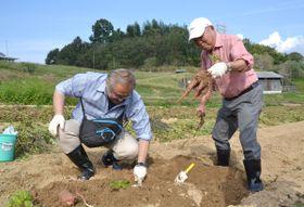 サツマイモの収穫を体験する移住体験ツアーの参加者=高松市香南町、香南アグリーム