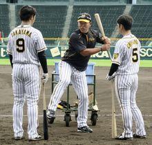 高山(左)、近本らに指導する阪神の井上打撃コーチ(中央)=甲子園