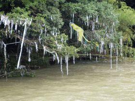 津保川の氾濫で資材置き場から流出し、川沿いの樹木に絡みついたプラスチック原料=9日、岐阜県関市(中濃県事務所提供)