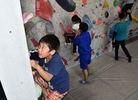 進路を見極めながらボルダリングの壁を登る子どもたち