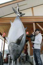 「勝浦漁港にぎわい市場」にお目見えしたクロマグロのモニュメント=16日、和歌山県那智勝浦町