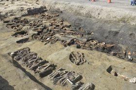 JR大阪駅近くの「梅田墓」で見つかった埋葬人骨(大阪市文化財協会提供)
