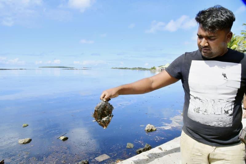 重油が漂着したモーリシャスの海岸で、魚の死骸を持つ住民(lexpress.mu提供・共同)