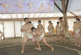 香南相撲クラブで稽古する児童ら(香南市香我美町)