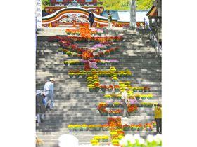 防府天満宮大石段を彩る花回廊。「幸せます」を鮮やかな花で表現した=19日、防府市