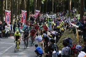 多くの観戦客で盛り上がるジャパンカップサイクルロードレース。今年は視察者も多数訪れる予定だ=2016年10月、宇都宮市森林公園