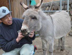 代表動物選挙に初出馬するロバの「アイボン」