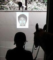 プロジェクターで投影した人の顔を馬に見せ、反応を調べる実験=2016年9月、東京都三鷹市(中村航介さん提供)