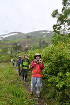荒天に負けず山歩きを楽しむ登山者たち=朝日町・鳥原山