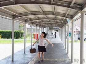ミストシャワーが設置された連絡通路=川島町下八ツ林の役場庁舎前