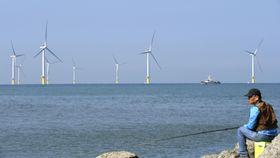台湾沖に完工した洋上風力発電の風車群=12日、台湾・苗栗(共同)