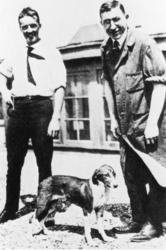 初めて抽出に成功したインスリンで治療した糖尿病の犬を前にするバンティング(右)、ベスト両氏=1921年(ゲッティ=共同)