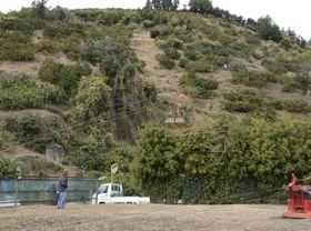 索道で急斜面からミカンを運搬する赤松耕治さん=10日午前、宇和島市吉田町立間