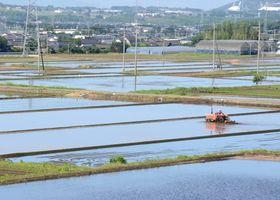 田植えを待つ大津町の水田。地下水涵養のためには、現存する水田を維持することが重要になる