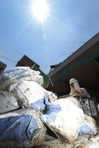 強い日差しの下、災害ごみを運び出すボランティア=16日午後0時4分、岡山県倉敷市真備町地区